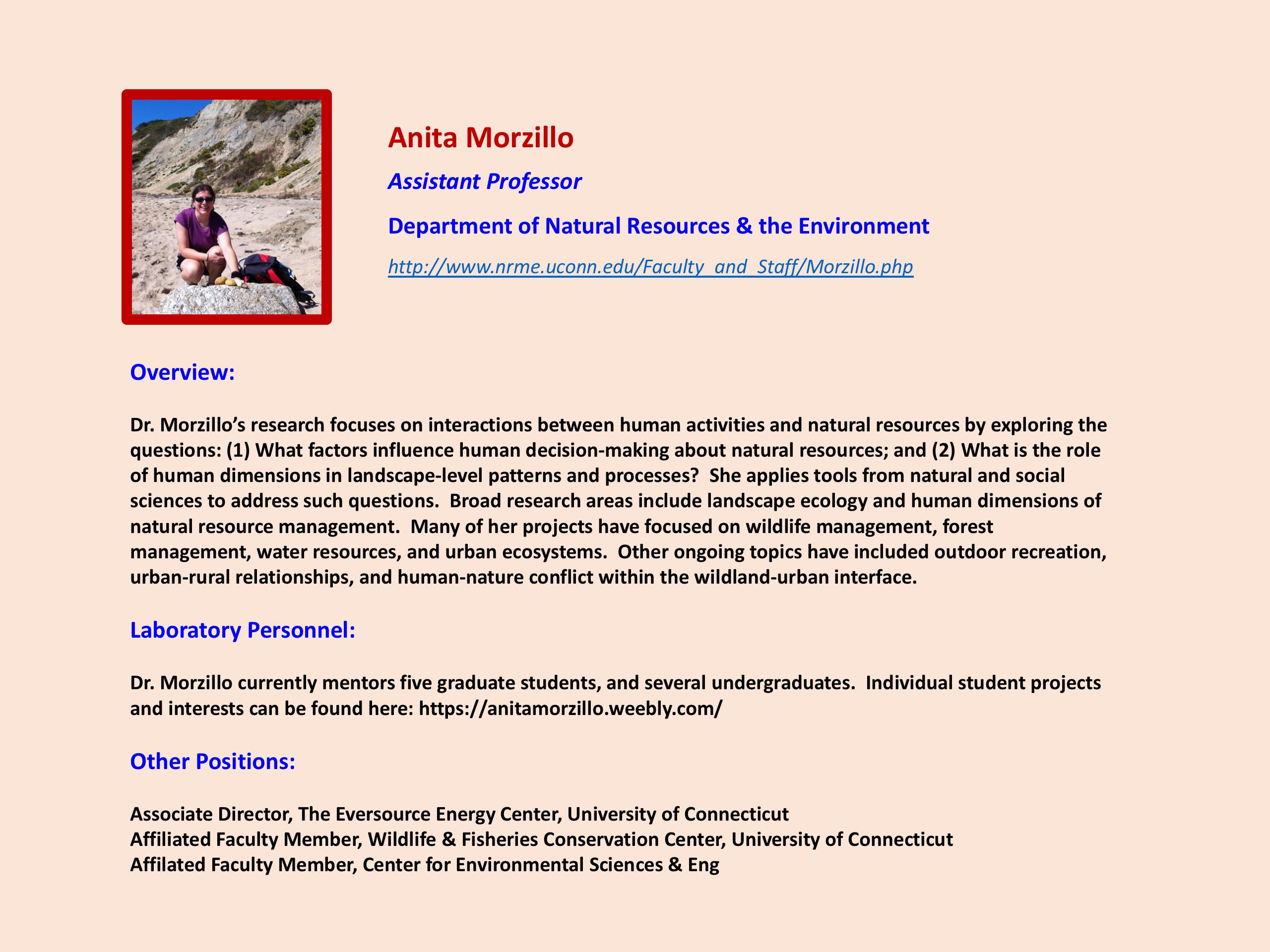 Focus on Faculty - Anita Morzillo
